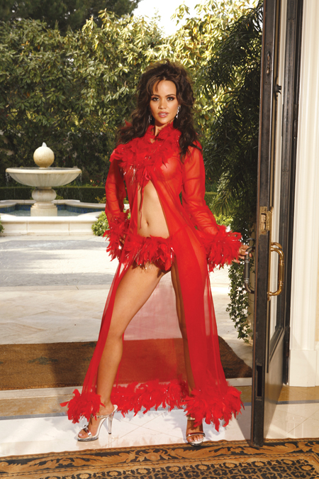 Long Sleeve Sheer Robe - Red